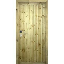 Дверь «Грунт-Д»