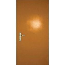 Дверь «Порошок-ДТ»