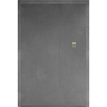 Дверь «ПГ-П»
