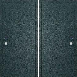 Дверь «Порошок-Т»